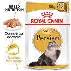 Umido Royal Canin Persian Adult