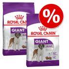 Varčno pakiranje Royal Canin Giant