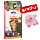 Veľké balenie granúl Bosch + hračka prasiatko zdarma!