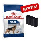Velika vreća Royal Canin Size + 4 role po 20 vrećica gratis!