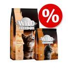 Övergångsset! Wild Freedom Kitten