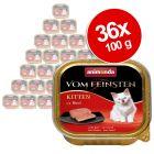Výhodné balenie Animonda vom Feinsten Kitten, 36 x 100 g