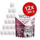 """Výhodné balenie Wolf of Wilderness Adult kapsičky """"Soft & Strong"""" 12 x 300 g"""