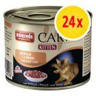 Voordeelpakket Animonda Carny Kitten Kattenvoer 24 x 200 g