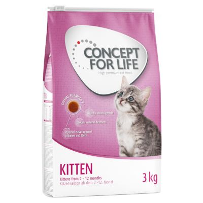 Welcome Kit Kitten Concept for Life + Cuscinetto gioco Aumüller