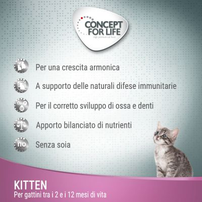 Welcome Kit Kitten crocchette Concept for Life + Cuscinetto Aumüller