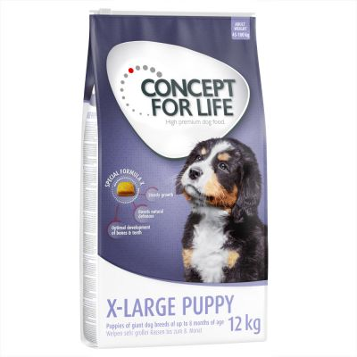 Welcome Kit Puppy & Junior Concept for Life + Portacrocchette