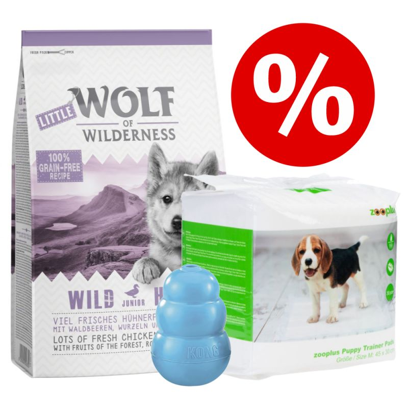 Welcome Kit Puppy & Junior Wolf of Wilderness + Tappetini igienici + KONG
