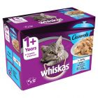 Whiskas Casserole Fish Selection in Jelly
