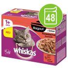 Whiskas 1+ Casserole / Ragout Selectie in Gelei Kattenvoer 48 x 85 g