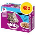 Whiskas 1+ Classic Selectie Maaltijdzakjes Kattenvoer Voordeelpakket 48  x 85 / 100 g
