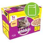 Whiskas 1+ Creamy Soup