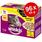 Whiskas 1+ Creamy Soup 96 x 85 g