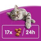 Whiskas Dentabites pamlsky pro kočky