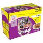 Whiskas Junior Classic Selectie in Saus / Gelei Maaltijdzakjes 12 x 85 g / 100 g