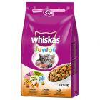 Whiskas Junior: Kitten, Kylling