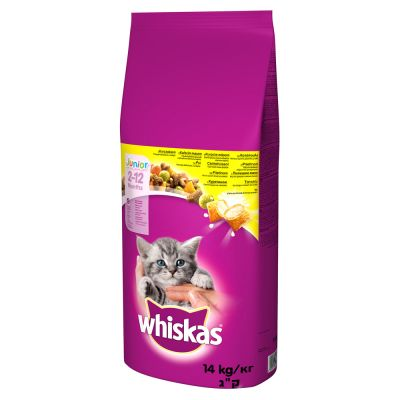 Whiskas Junior, poulet pour chat