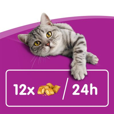 Whiskas Temptations - Chicken & Cheese