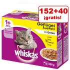 Whiskas 192 x 100 g bolsitas en oferta: 152 + 40 ¡gratis!