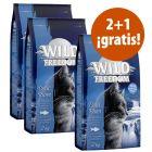Wild Freedom 6 kg pienso en oferta: 4 + 2 kg ¡gratis!