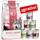 Wolf of Wilderness 12 kg pienso + 6 x 400 g latas en pack mixto ¡gratis!