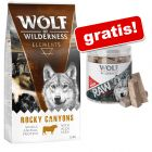 Wolf of Wilderness: 12 kg torrfoder + RAW Snack på köpet!