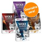Wolf of Wilderness Adult Elements - смесена опаковка