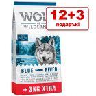 12 + 3 кг подарък! Wolf of Wilderness Adult суха храна за кучета