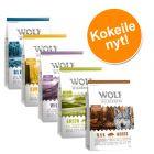 Wolf of Wilderness Adult -kokeilupakkaus, monta makua