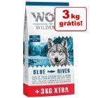 Wolf of Wilderness Adult ração 12 + 3 kg grátis!