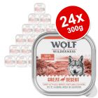 Wolf of Wilderness Adult Saver Pack 24 x 300g