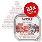 Wolf of Wilderness Adult -säästöpakkaus 24 x 300 g