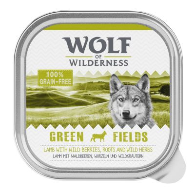 Wolf of Wilderness Adult 24 x 300 g