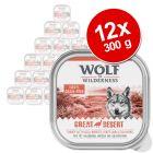 Wolf of Wilderness Adult 12 x 300 g