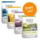 Wolf of Wilderness - Blandet pakke