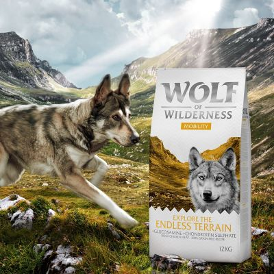 Wolf of Wilderness Explore The Endless Terrain Mobility