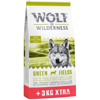 Wolf of Wilderness Green Fields con cordero