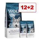 Wolf of Wilderness -kuivaruokaa: 12 kg + 2 kg kaupan päälle!