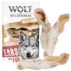 """Wolf of Wilderness """"Meadow Grounds"""" Oreilles de lapin avec poils pour chien"""