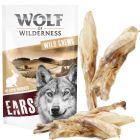 """Wolf of Wilderness """"Meadow Grounds"""" – Urechi de iepure"""