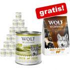 Wolf of Wilderness: Nassfutter 24 x 800 g + 1 kg Trockenfutter gratis!
