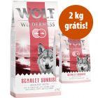 Wolf of Wilderness ração 14 kg em promoção: 12 kg + 2 kg grátis!