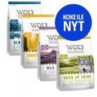 Wolf of Wilderness -tutustumispakkaus, 4 makua