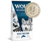 "Wolf of Wilderness ""Vast Oceans"", poisson"