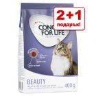 2 + 1 гратис! 3 x 400 г Concept for Life суха храна за котки