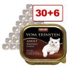 36 x 100 g Animonda vom Feinsten: 30 + 6 kaupan päälle!