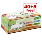48 x 100g Catessy Wet Cat Food Pouches - 40 + 8 Free!*