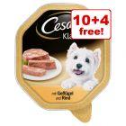 14 x 150g Cesar Trays Wet Dog Food - 10 + 4 Free!*