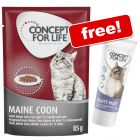 24 x 85g Concept for Life Breed Wet Cat Food + Beauty Cat Paste Free!*