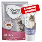 24 x 85 g Concept for Life -märkäruoka + 75 g Beauty Paste kaupan päälle!